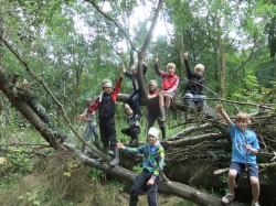 Hutten-bouwen-in-het-bos